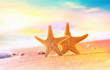 Summer beach with a starfish on a background of the tropical ocean and the sunset sky