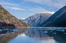 Icebergs In Tracy Arm Fjord In Southeast Alaska