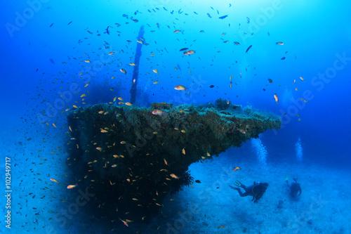 Staande foto Schipbreuk Fesdu shipwreck in the indian ocean