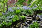 Fototapeta Kwiaty - ogród