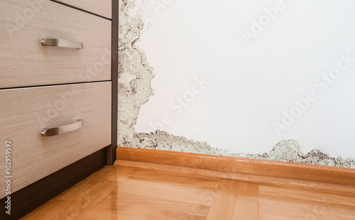 Valokuva  Damage caused by damp on a wall in modern house
