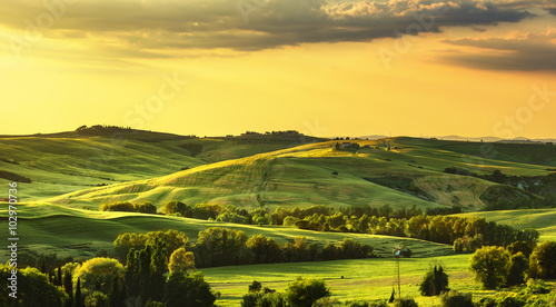 Poster Melon Tuscany spring, rolling hills on sunset. Rural landscape. Green