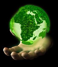 Mano Pianeta Verde