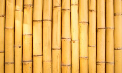 Bambus1702a