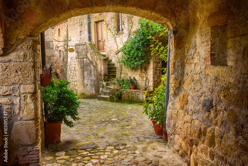 Obraz Narrow street of medieval tuff city Sorano with arch, green plants and cobblestone, travel Italy background - fototapety do salonu