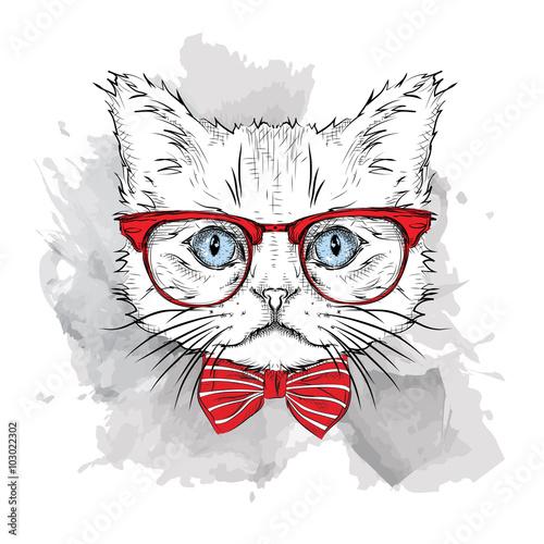 Photo sur Toile Croquis dessinés à la main des animaux Picture of portrait of a cat with the glasses. Vector illustration.