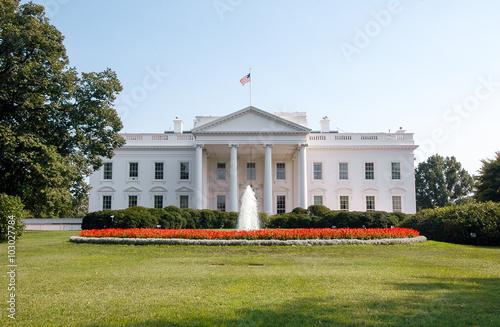 White House Wallpaper Mural