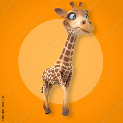 Photo  Fun giraffe