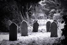 Cemetery & Snow