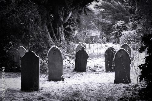 Vászonkép Cemetery & snow