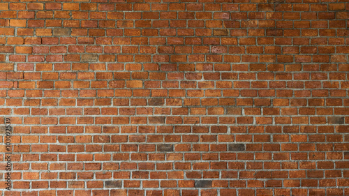 Garden Poster Brick wall cement and brick wall texture background