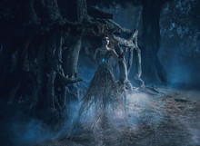 Fantasy Woman Trees Spirit Wanders Woods In Dark Magic Forest. Girl Tree Took Root Near Mighty Old Oak, Mystical Gothic Blue Image, Spells, Fashion Model. Creative Dress Costume. Color Toning