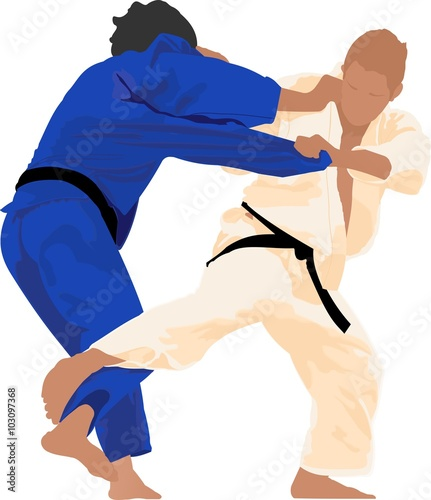 Judo is a modern martial art - 103097368