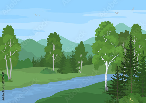 Papiers peints Piscine Summer Landscape with Birches, Fir Trees and Flowers, River and Sky with Birds. Vector