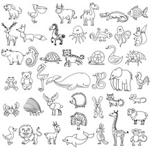 Doodle Animals Childrens Drawi...