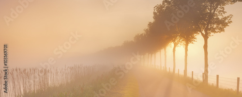 Photo Foggy sunrise in typical polder landscape in The Netherlands