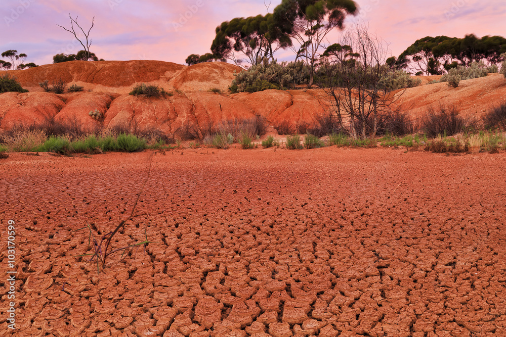 WA Balladonia Dry soil close
