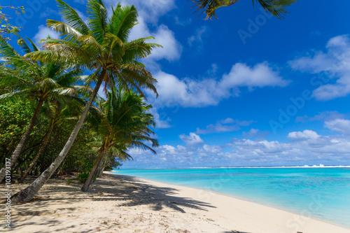 Fotografie, Obraz  White beach on desert island in Rarotonga, Cook Islands