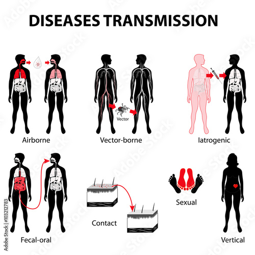Fotografía  disease transmission