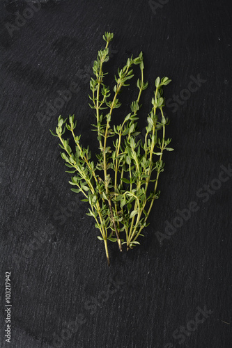 fresh green thyme, Thymus vulgaris, on dark slate