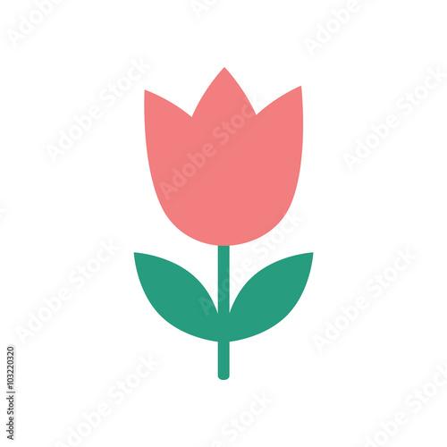 Photo flat icon on white background tulip blooms