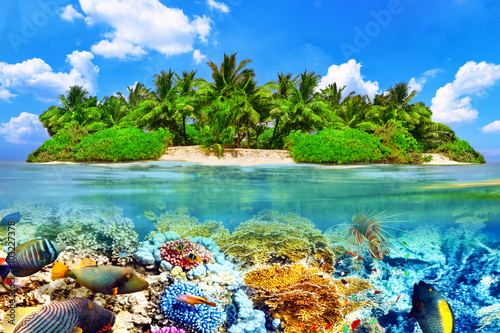 Tropical island and the underwater world in the Maldives. Thoddo Wallpaper Mural