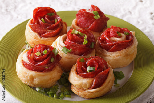 Fotografie, Obraz  Delicious food: baked roll with salami and cheese close-up