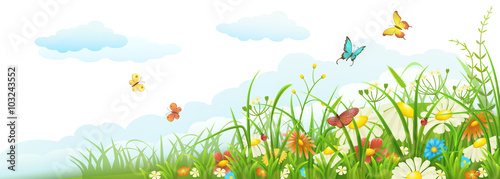 Tela Summer meadow banner with green grass, flowers, butterflies and clouds