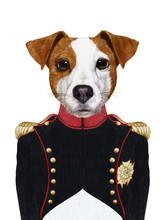 Portrait Of Jack Russell In Mi...