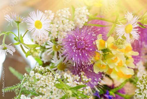 Fototapety, obrazy: Bouquet of spring flowers