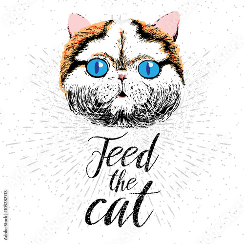 Deurstickers Hand getrokken schets van dieren Feed the cat. Vector illustration with hand drawn lettering on texture background. Inscriptions for pet lovers. Painted brush lettering. Custom typography. Calligraphic. Poster with demanding phrase.