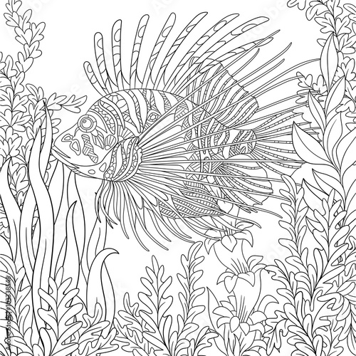 Zentangle Stylized Cartoon Zebrafish Lionfishpterois Volitans Is