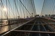 Warm Sunrise Over Brooklyn and Manhattan Bridges