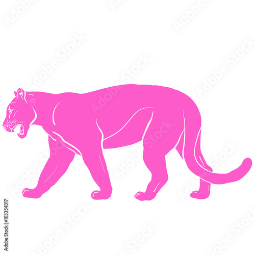 Photo  pink panther with huge tusks