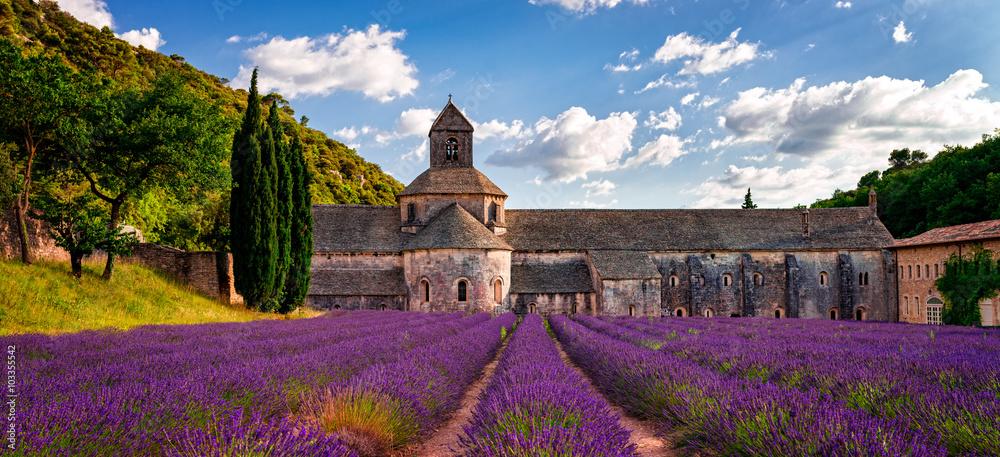 Fototapety, obrazy: abbey