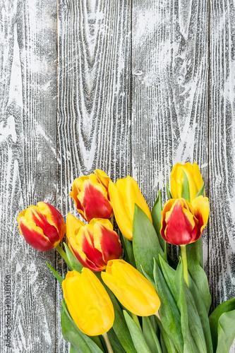 In de dag Tulp Tulip Flowers on Wooden Backdrop