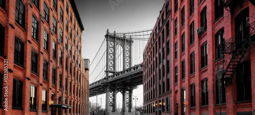 Tuinposter Brooklyn Bridge Manhattan Bridge from Washington Street, Brooklyn