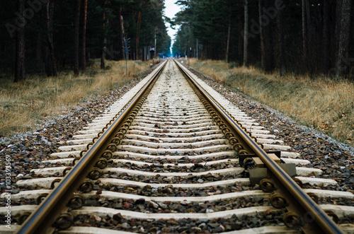 Photo sur Toile Voies ferrées railroad tracks