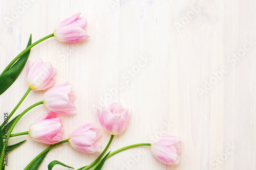 Fond de hotte en verre imprimé Tulip Pink tulips on white wooden background. Flat lay, top view, Greeting card concept.