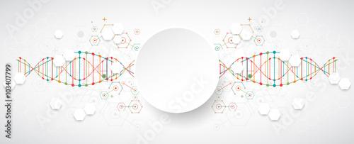 Fotografía  Science template, wallpaper or banner with a DNA molecules.