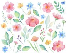 Watercolor Set Of Flowers.