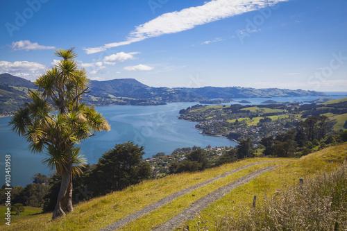 Photo  Landschaft rund um Dunedin Otago