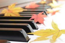 紅葉(もみじ)とピアノ