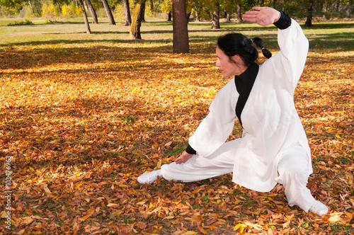 obraz dibond Kung fu practice