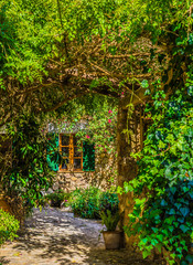 Fototapeta Idyllic view of an romantic garden and window of an mediterranean house
