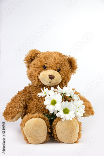 Teddy bear on white background #103501769
