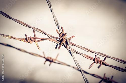 Valokuva  dangerous wire fence