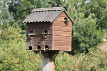 A Wooden Rustic Birds House Nesting Box.