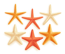 3D Realistic Set Of Vector Starfish With Different Colors For Summer Design Elements Isolated In White Background. Vector Illustration