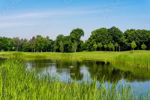 Deurstickers Groene Spring meadow landscape